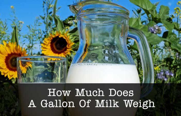 gallon of milk weigh