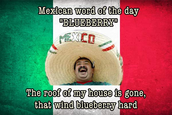 mexican word of the day blueberry